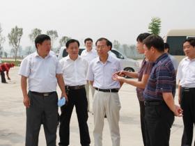 古城台儿庄:区长王广金视察枣台线BRT建设工作(图)