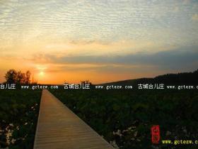 【摄影作品欣赏】台儿庄运河湿地彩霞飞(图)