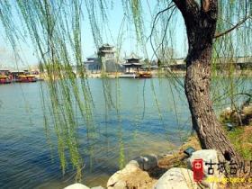 台儿庄:多家高端踩线团来感受枣庄之春古城之美(图)