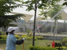 台儿庄区集中消杀园林树木病虫害(图)