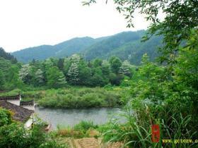 本站记者采风(一):中国最美的乡村婺源----晓起村等(图)