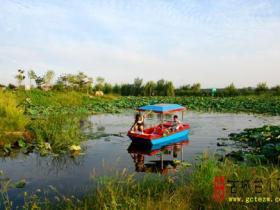 台儿庄运河湿地风光3