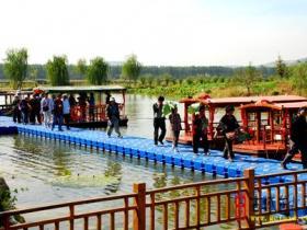 台儿庄运河湿地•马兰屯百荷园18