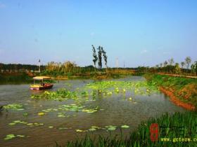 台儿庄运河湿地•樱花洲8