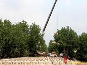 古城台儿庄:前薛公路广济桥完成桥板吊装(图)