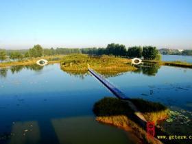 摄影报道:最美水乡台儿庄之樱花洲湿地风光(二)