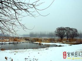 摄影报道:中国最美水乡台儿庄之涛沟河湿地雪景(一)