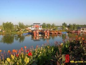 【图文】为了湿地明天更美好——记台儿庄区人大代表、运河湿地景区主任 秦庆芝
