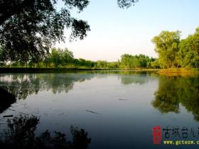 摄影报道:台儿庄国家运河湿地之生态涛沟河观光采风(四)