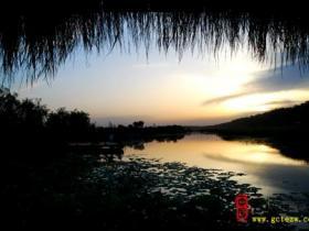 台儿庄运河湿地美景多9
