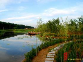 摄影报道:台儿庄运河国家湿地公园美景多(四)
