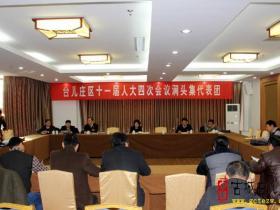 人大代表分组讨论台儿庄区政府工作报告和其它相关报告(图)