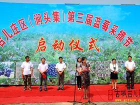 台儿庄区今天举办第三届蓝莓采摘节活动仪式(图)