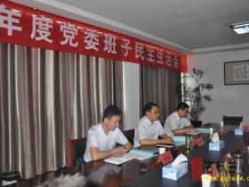 邳庄镇召开2015年度党委班子专题民主生活会 陈忠奇出席并点评(图)
