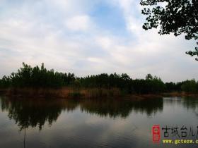 摄影报道:台儿庄运河湿地之赵村湖(三)