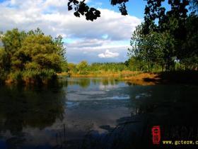 山东台儿庄运河湿地之涛沟河风景区(图)