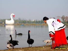 精品湿地 • 台儿庄双龙湖公园(二)