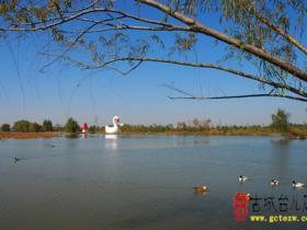 精品湿地 • 台儿庄双龙湖公园(九)