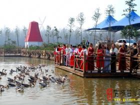 精品湿地 • 台儿庄双龙湖公园(十)