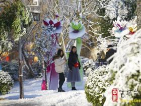 【图文】北方的雪 南方的情 与您相约 台儿庄古城