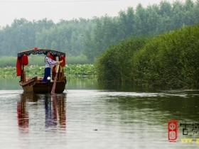 【图文】台儿庄双龙湖湿地,冬日我们身边的美好