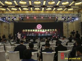 【图文】台儿庄古城当选为山东省品牌建设促进会常务理事单位