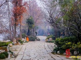 【读图】我在等一个人陪我去没去过的地方——台儿庄古城