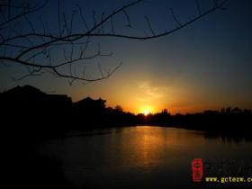 柳绿花香——台儿庄古城春天美景11