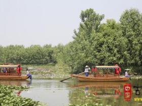 古城台儿庄:湿地上的婀娜多姿,尽显运河风情(图)
