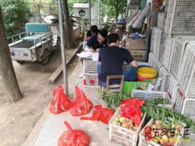 省、市林业部门食用林产品质量安全检测组来台儿庄抽检(图)