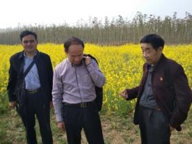 """【图文】""""春日之美""""——台儿庄双龙湖湿地采风活动举行"""