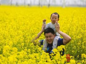 【图文】四月的台儿庄双龙湖湿地
