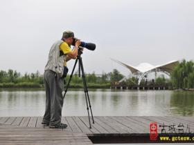 【图文】2018中国·大运河(台儿庄)全国摄影大展火热进行中
