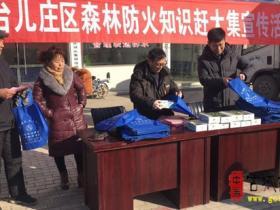 区林业局积极开展春节前森林防火宣传活动(图)