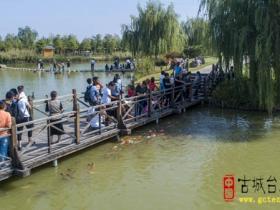 台儿庄双龙湖观鸟园:游人如织,共度国庆