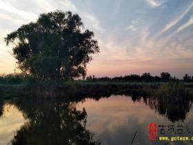 【美图欣赏】鲁南台儿庄涛沟河的秋色暮歌