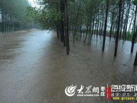 【利奇马】台儿庄迎强降雨 泥沟镇连夜转移受灾群众110人