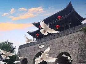铭记历史·珍爱和平 | 台儿庄古城举行国家公祭日纪念活动