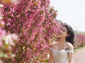 台儿庄古城全年赏花攻略:你若不开,怎得处处美景来
