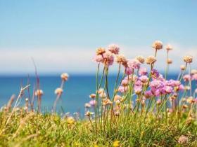人生能有几回春 -朱自清