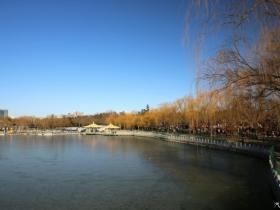 """动与静""""陶然亭公园""""的冬季美景"""