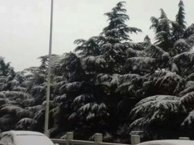 2017年第一场雪,还是在正月里