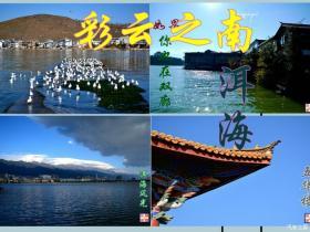 春节七天乐--大理洱海风景如画