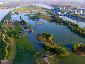 薰梅染柳,岸芷汀兰 ,台儿庄双龙湖湿地这明媚的春色送给你!