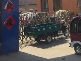 容城有人私下交易房子被制止