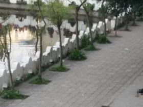 中学生被5名同学打死系谣言