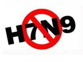 甘肃酒泉发现H7N9禽流感病毒