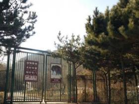 村民收费帮游客翻入动物园
