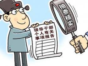 湖南:副县长隐瞒房产被双开