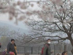 北京大兴等7地治霾不力被约谈